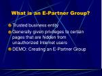 what is an e partner group
