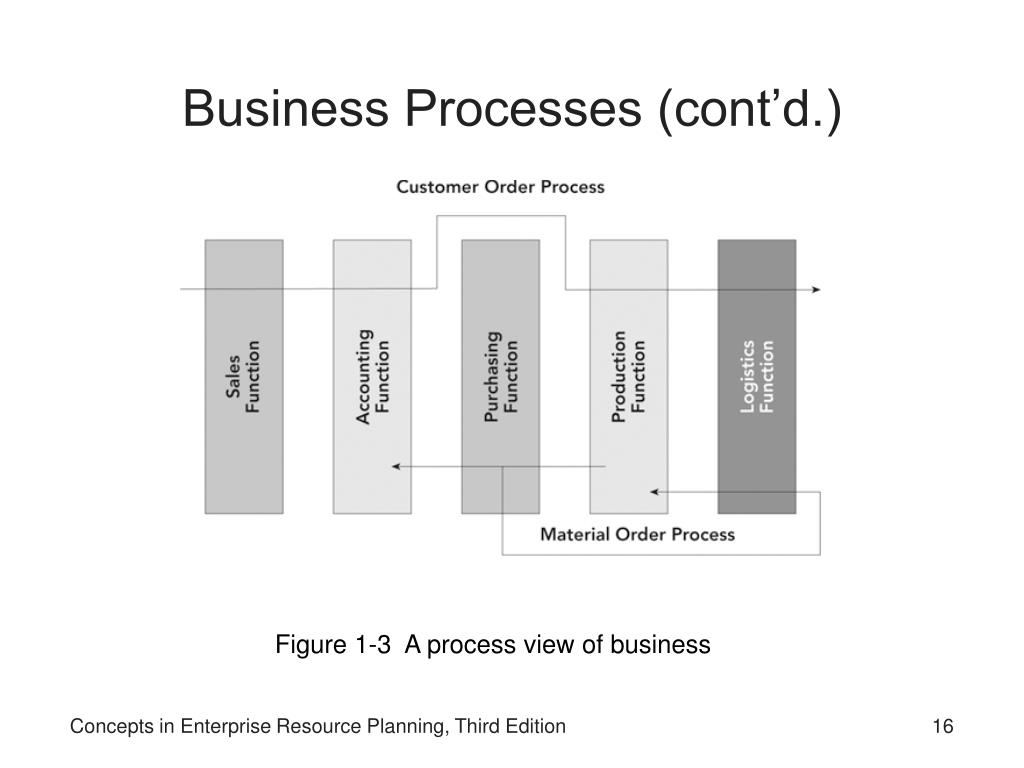 Business Processes (cont'd.)
