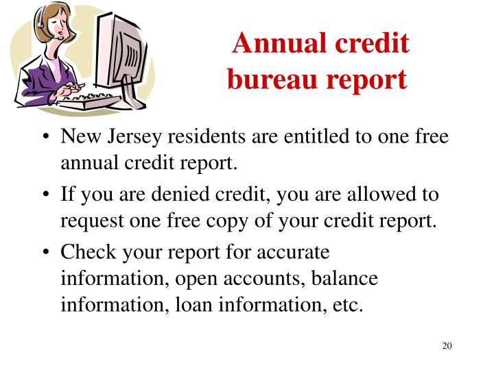 Annual credit bureau report