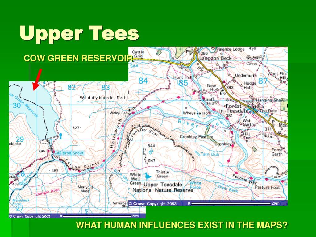 Upper Tees