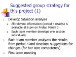 suggested group strategy for this project 1