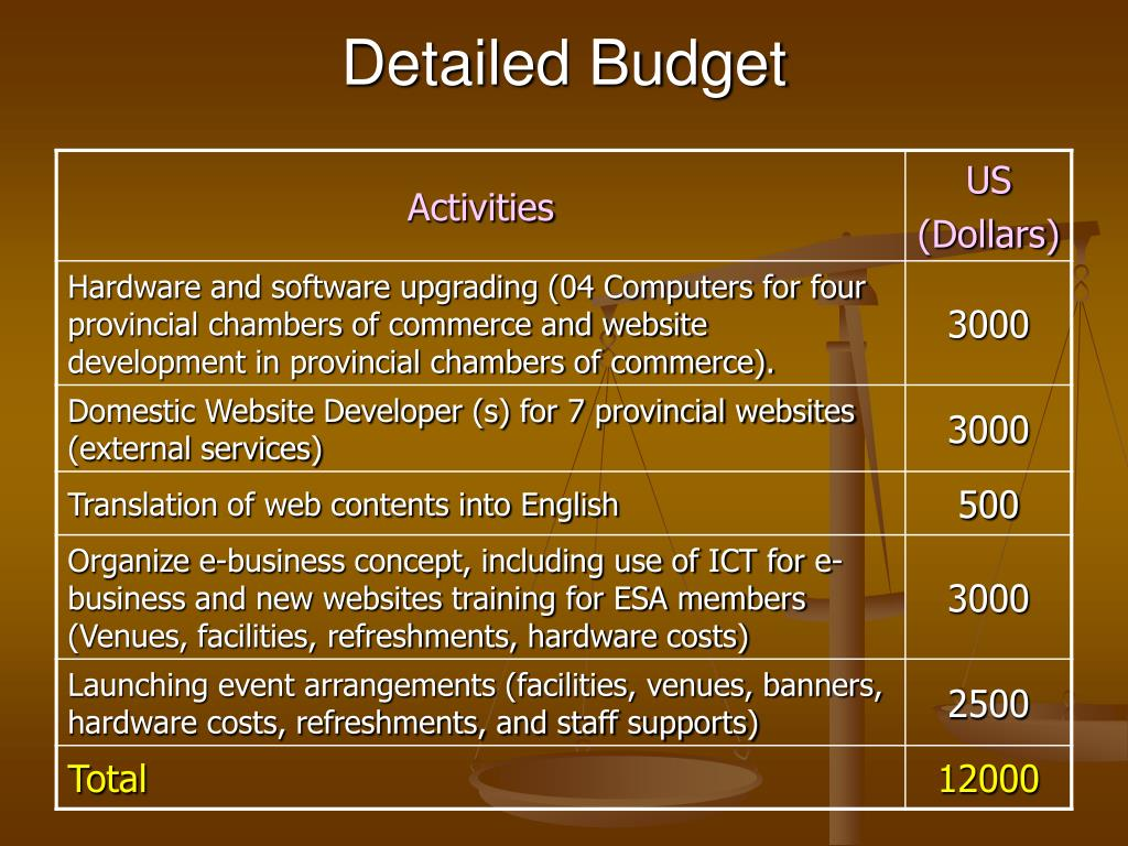 Detailed Budget