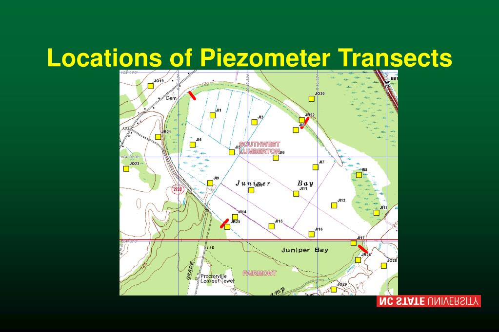 Locations of Piezometer Transects