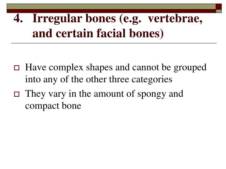 Irregular bones (e.g.  vertebrae, and certain facial bones)