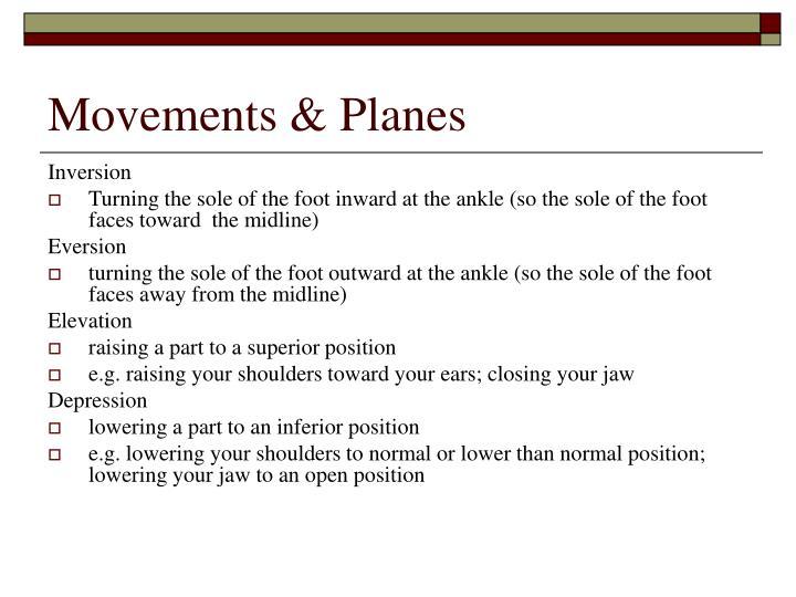 Movements & Planes