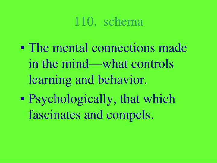 110.  schema