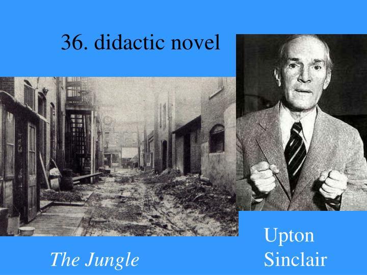 36. didactic novel