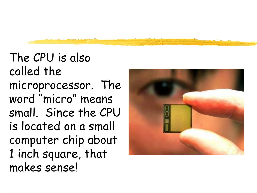 "The CPU is also called the microprocessor.  The word ""micro"" means small.  Since the CPU is located on a small computer chip about 1 inch square, that makes sense!"