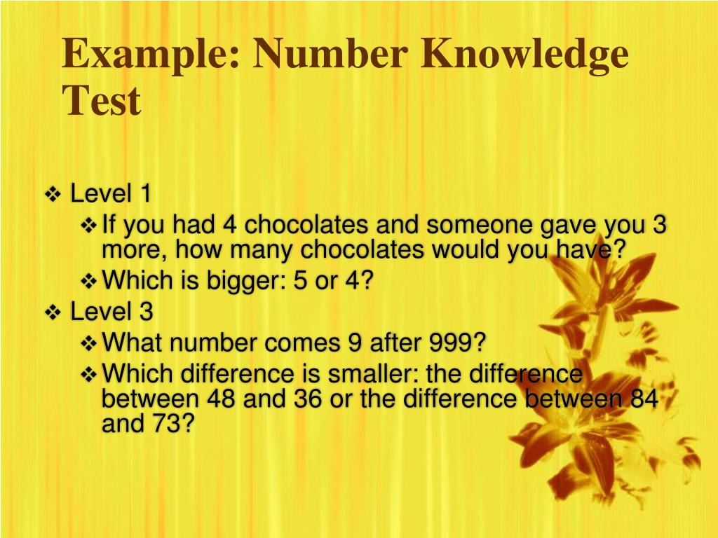 Example: Number Knowledge Test