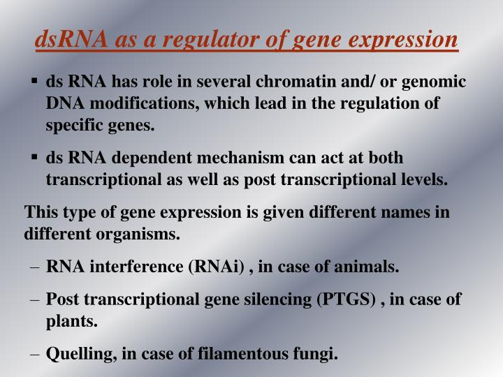 dsRNA as a regulator of gene expression