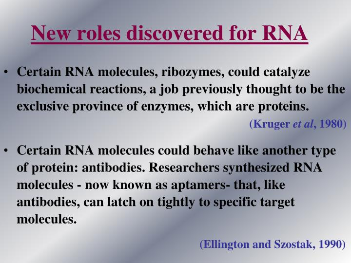 New roles discovered for RNA