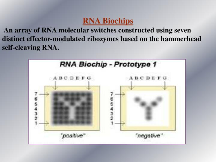 RNA Biochips