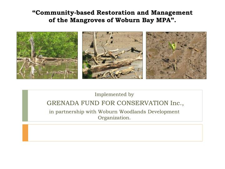 """""""Community-based Restoration and Management of the Mangroves of Woburn Bay MPA""""."""
