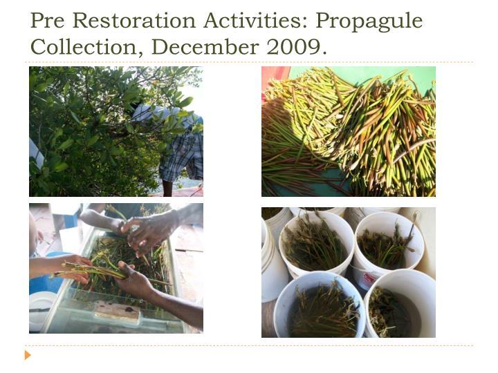 Pre Restoration Activities: Propagule Collection, December 2009.