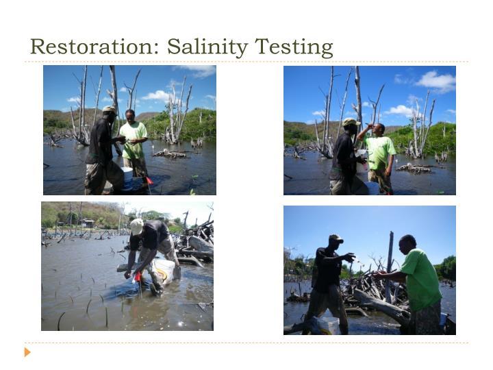 Restoration: Salinity Testing