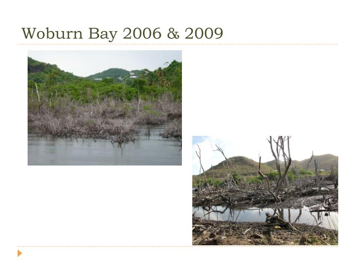 Woburn Bay 2006 & 2009