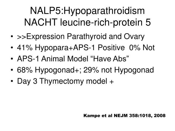NALP5:Hypoparathroidism