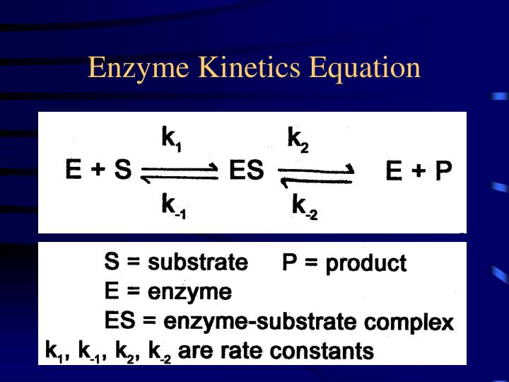 Enzyme kinetics equation