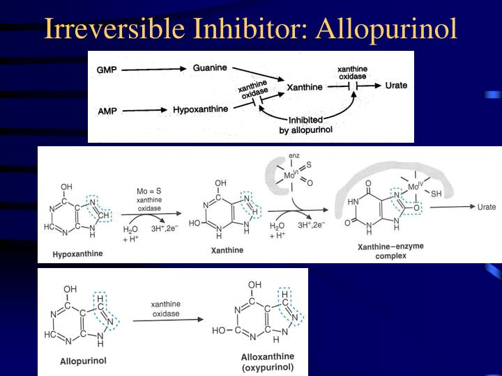 Irreversible Inhibitor: Allopurinol