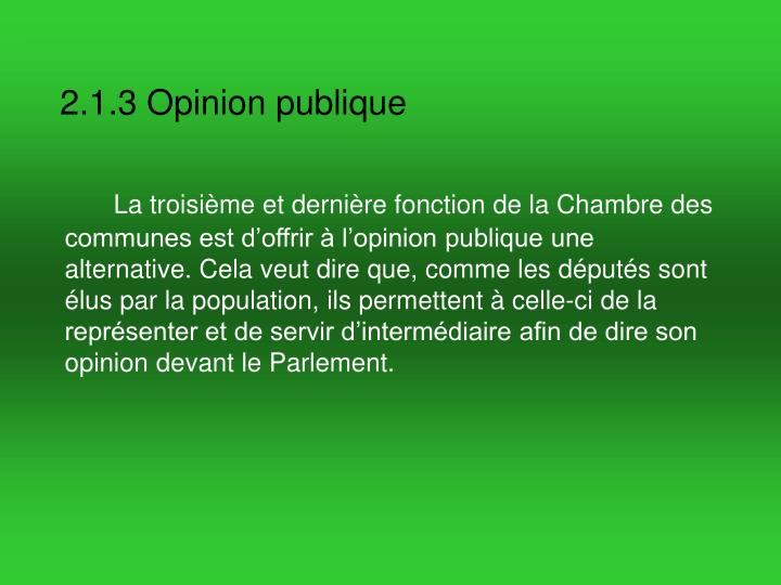 2.1.3 Opinion publique