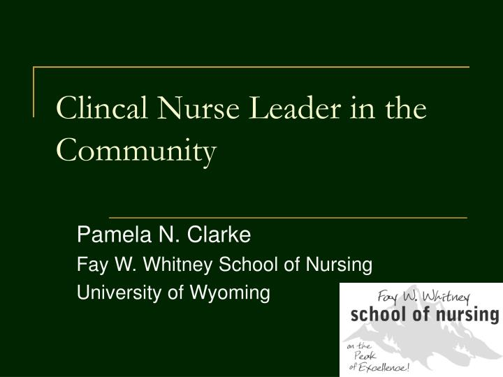 Clincal nurse leader in the community