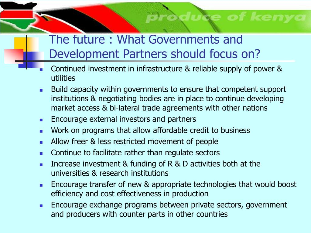 The future : What Governments and Development Partners should focus on?