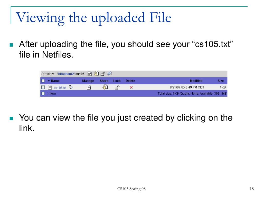 Viewing the uploaded File