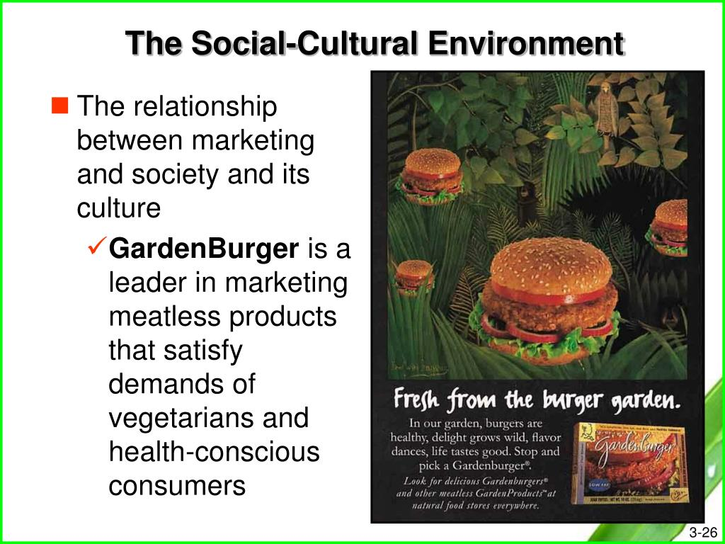 The Social-Cultural Environment