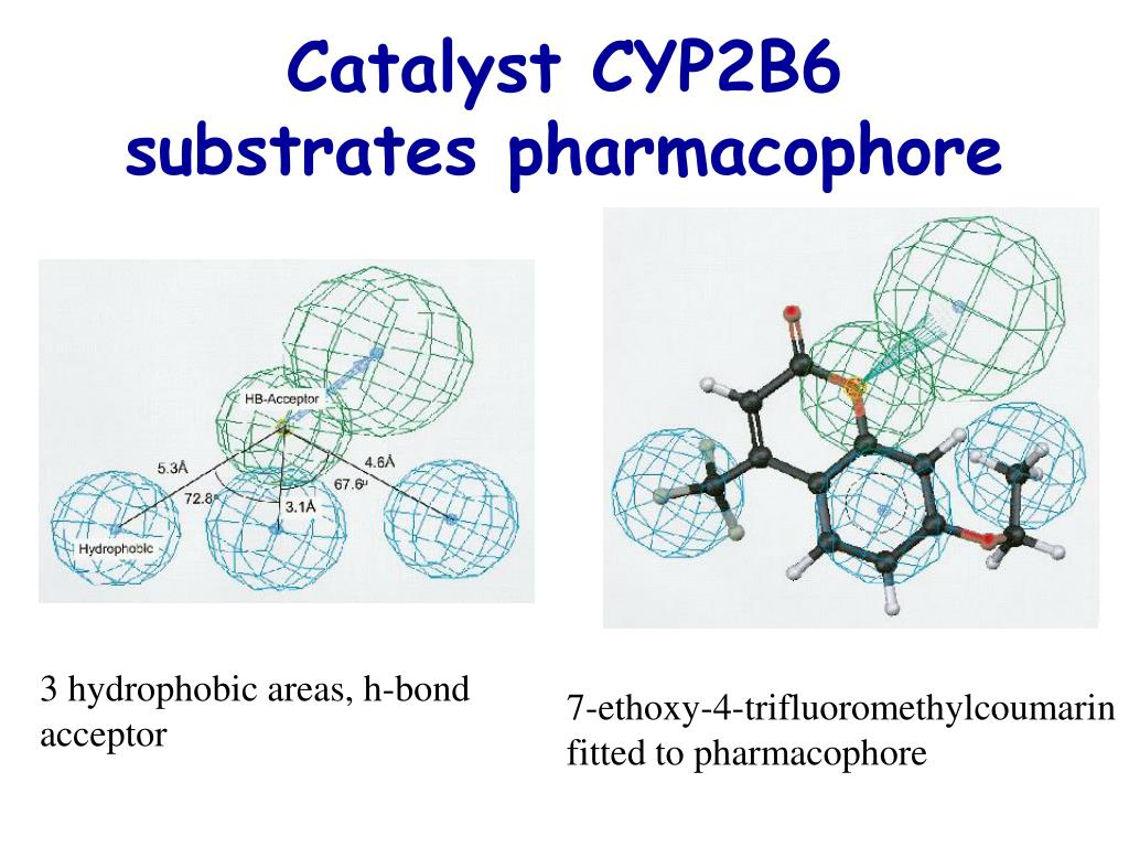 Catalyst CYP2B6 substrates pharmacophore