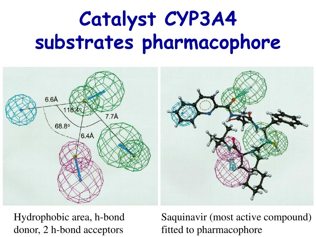 Catalyst CYP3A4 substrates pharmacophore