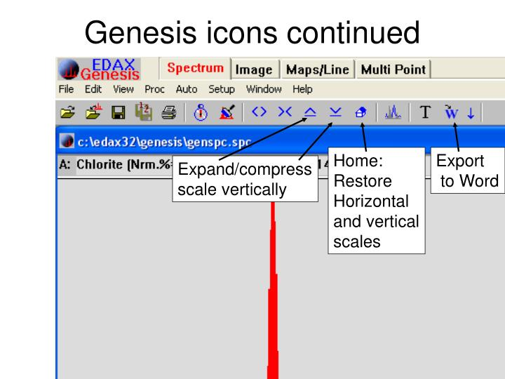 Genesis icons continued