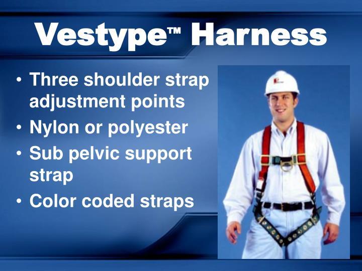 Vestype