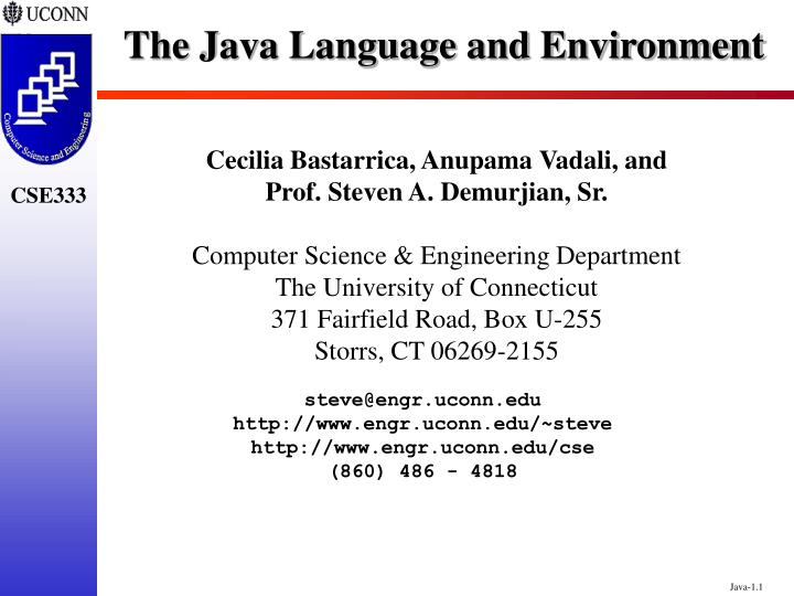 The java language and environment