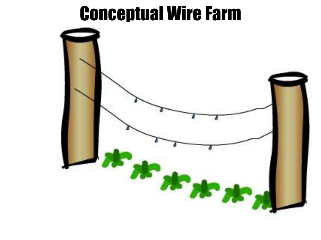 Conceptual Wire Farm