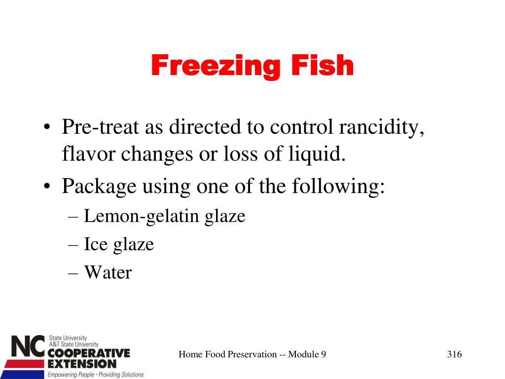 Freezing Fish
