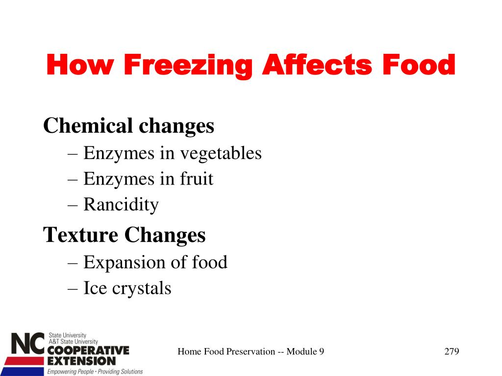 How Freezing Affects Food