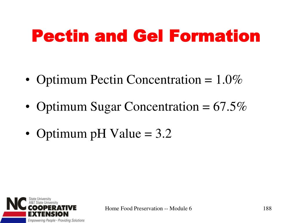 Pectin and Gel Formation