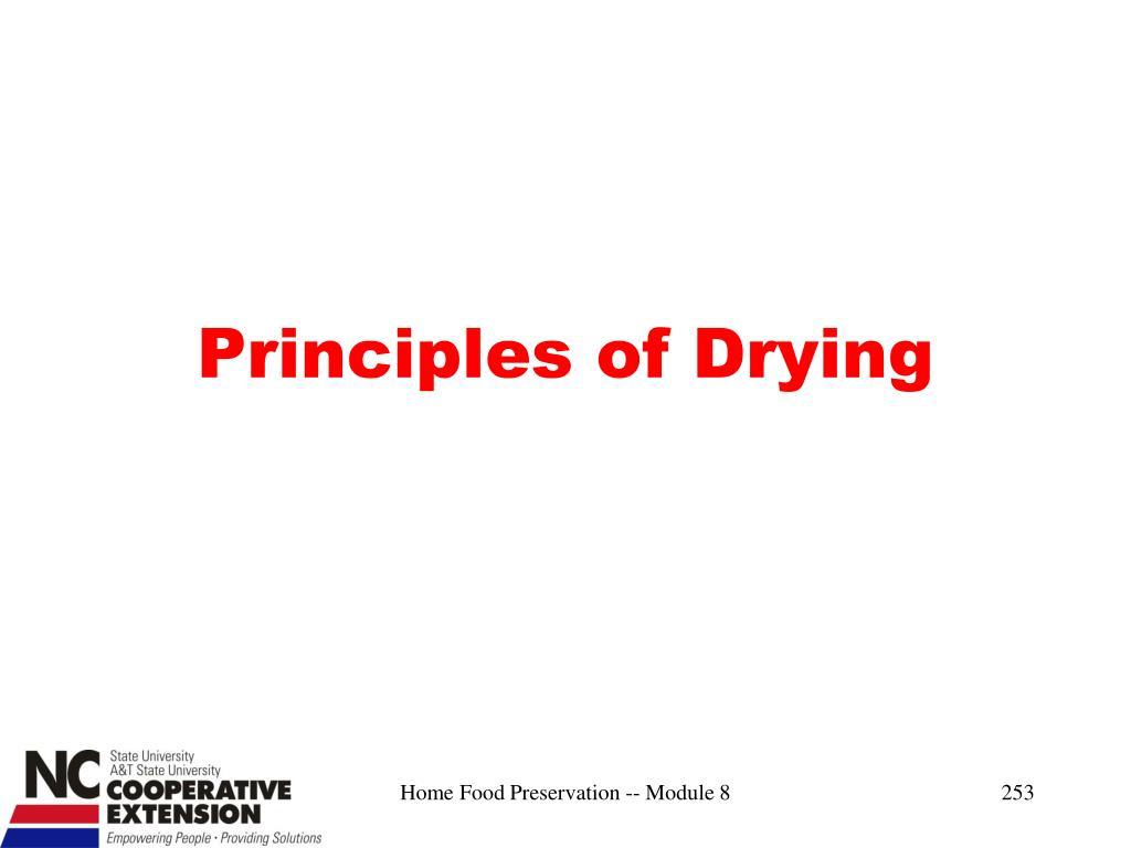 Principles of Drying