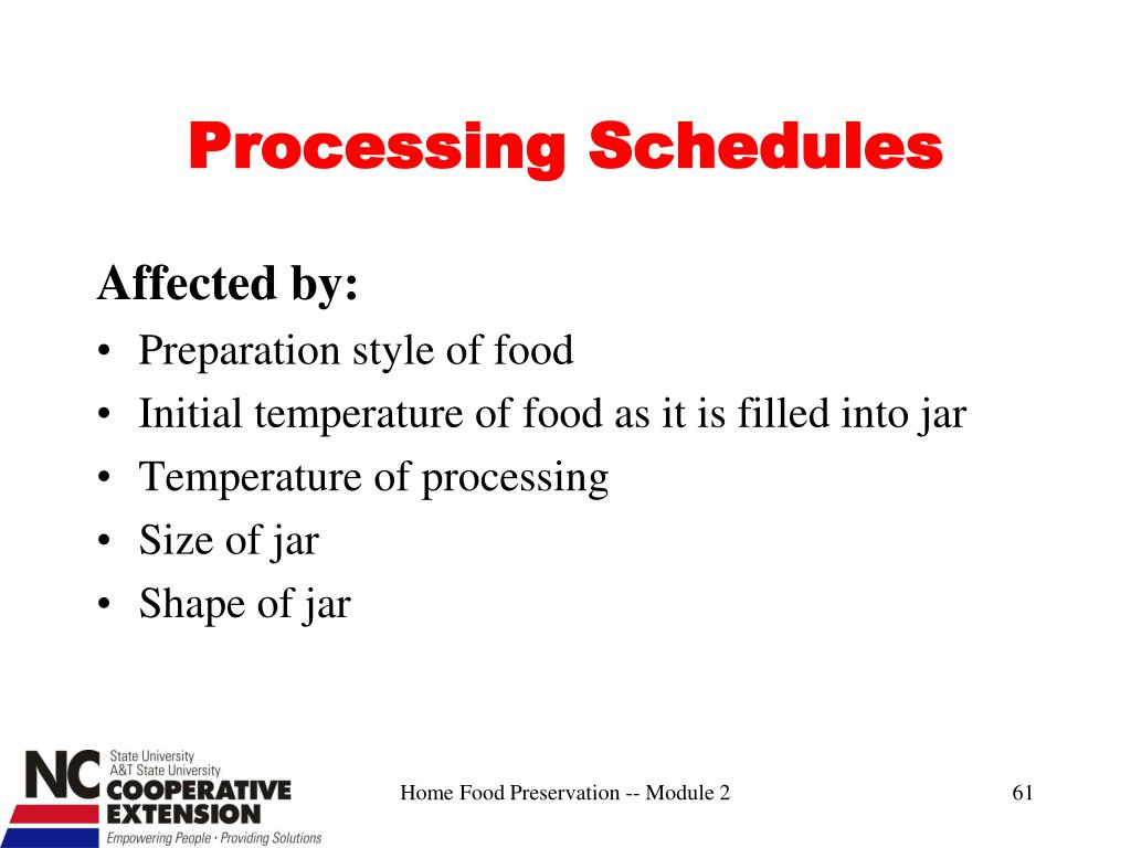 Processing Schedules