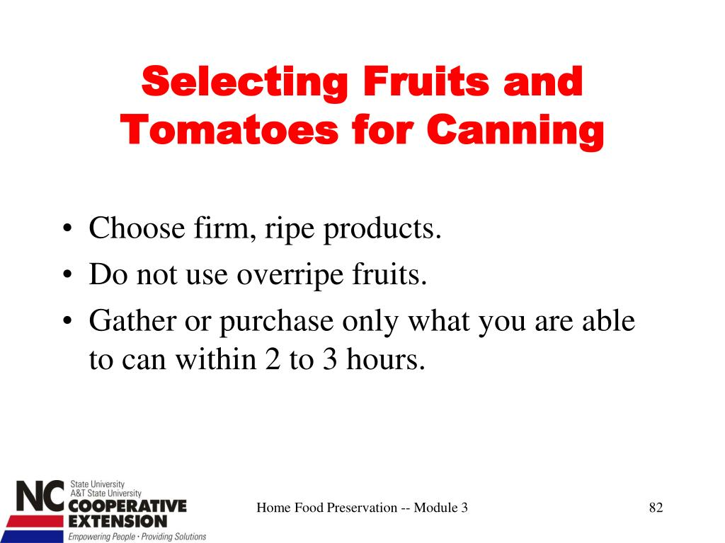 Selecting Fruits and Tomatoes for Canning