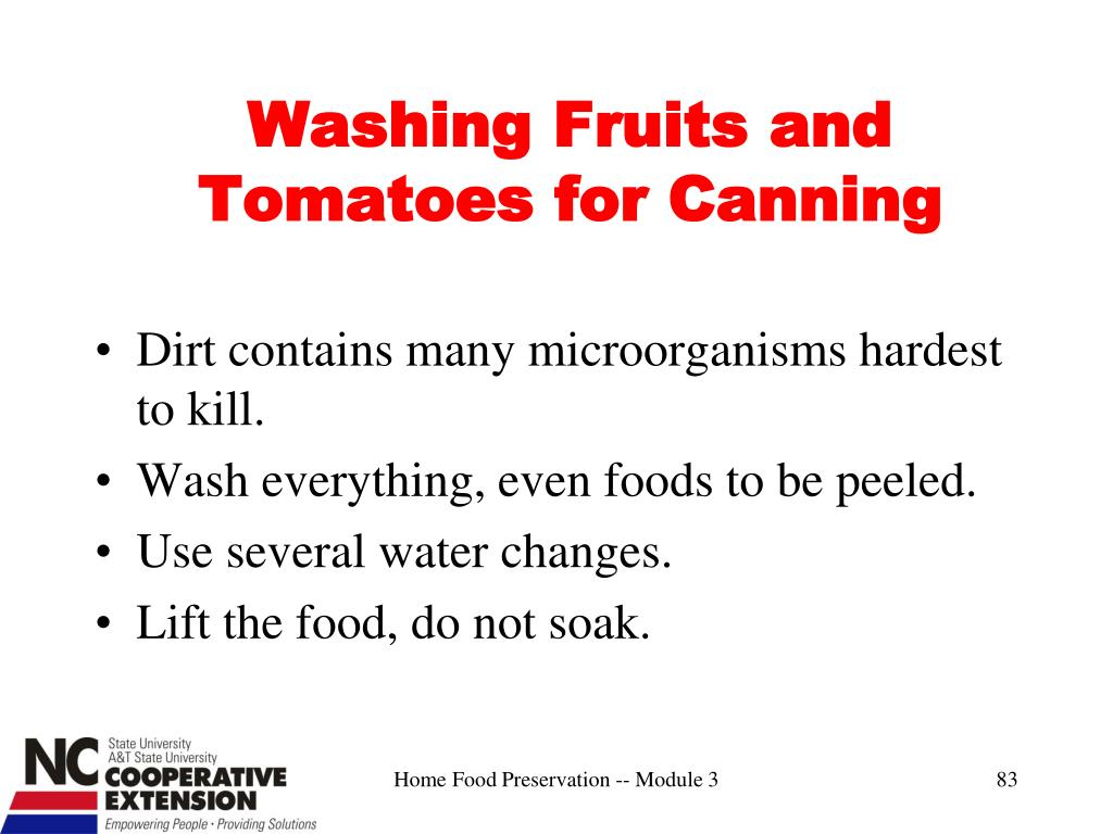 Washing Fruits and Tomatoes for Canning