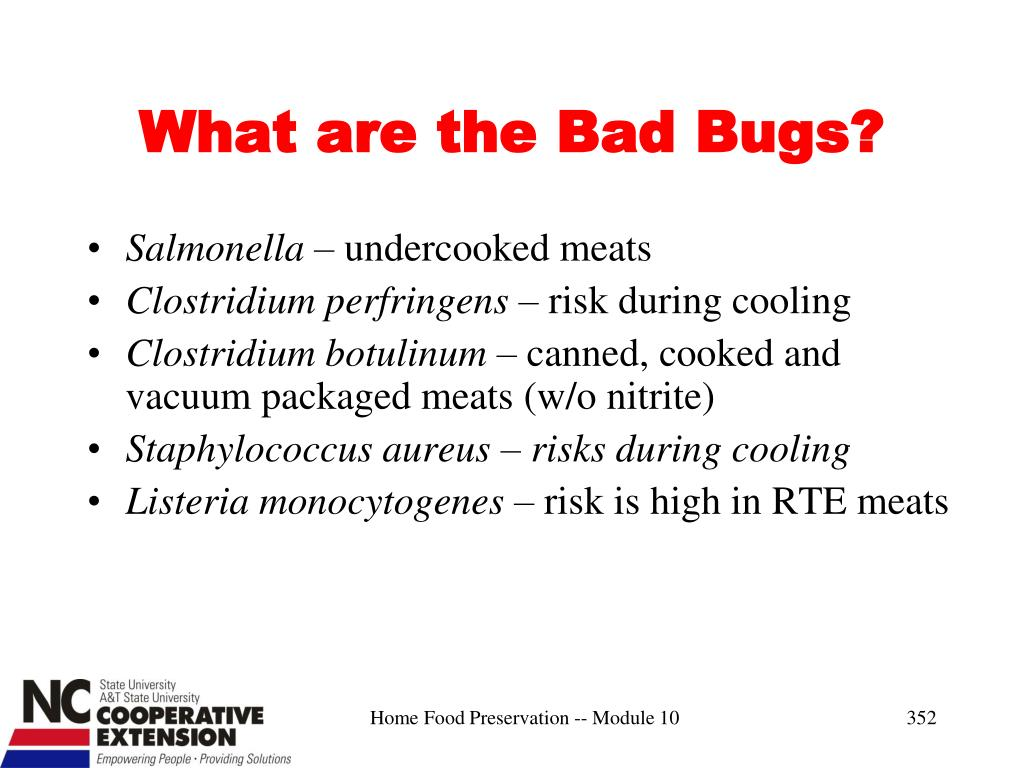 What are the Bad Bugs?