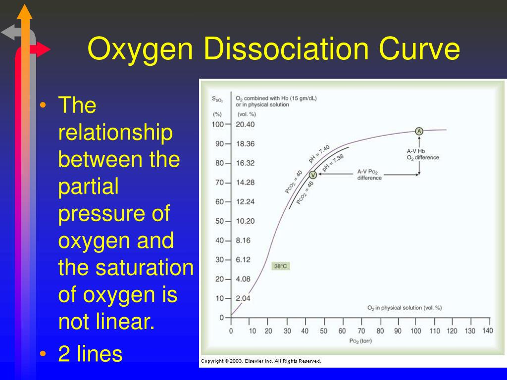 hemoglobin and oxygen relationship with god