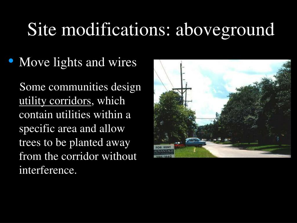 Site modifications: aboveground