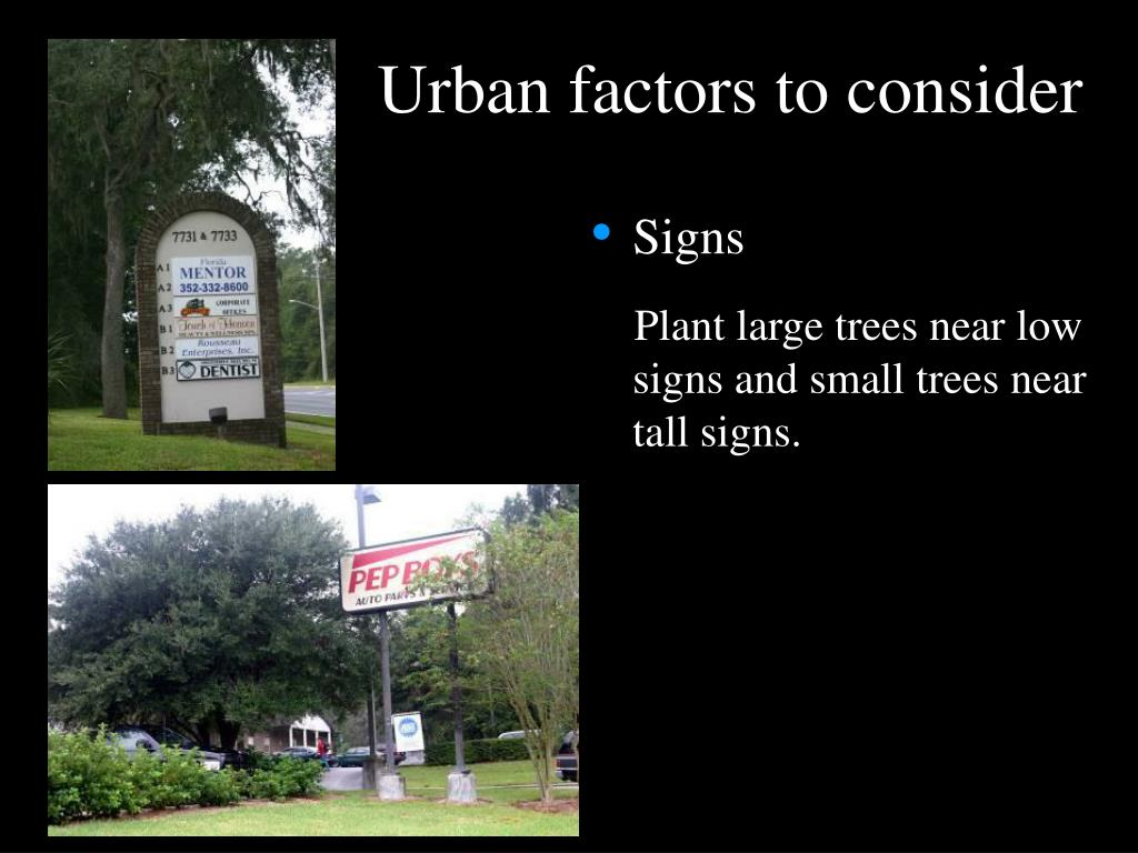 Urban factors to consider