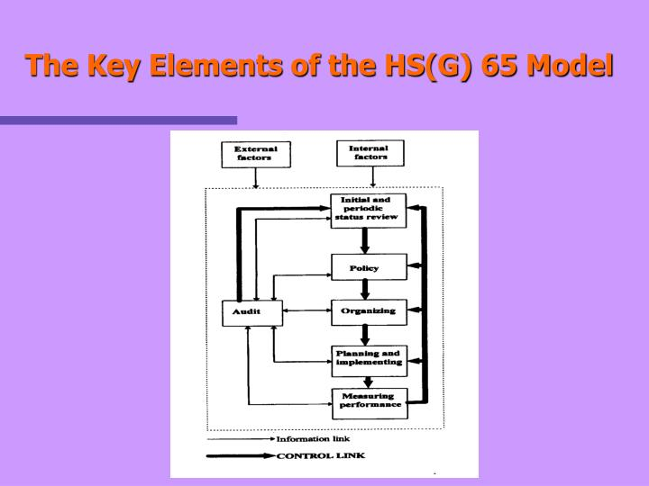 The Key Elements of the HS(G) 65 Model