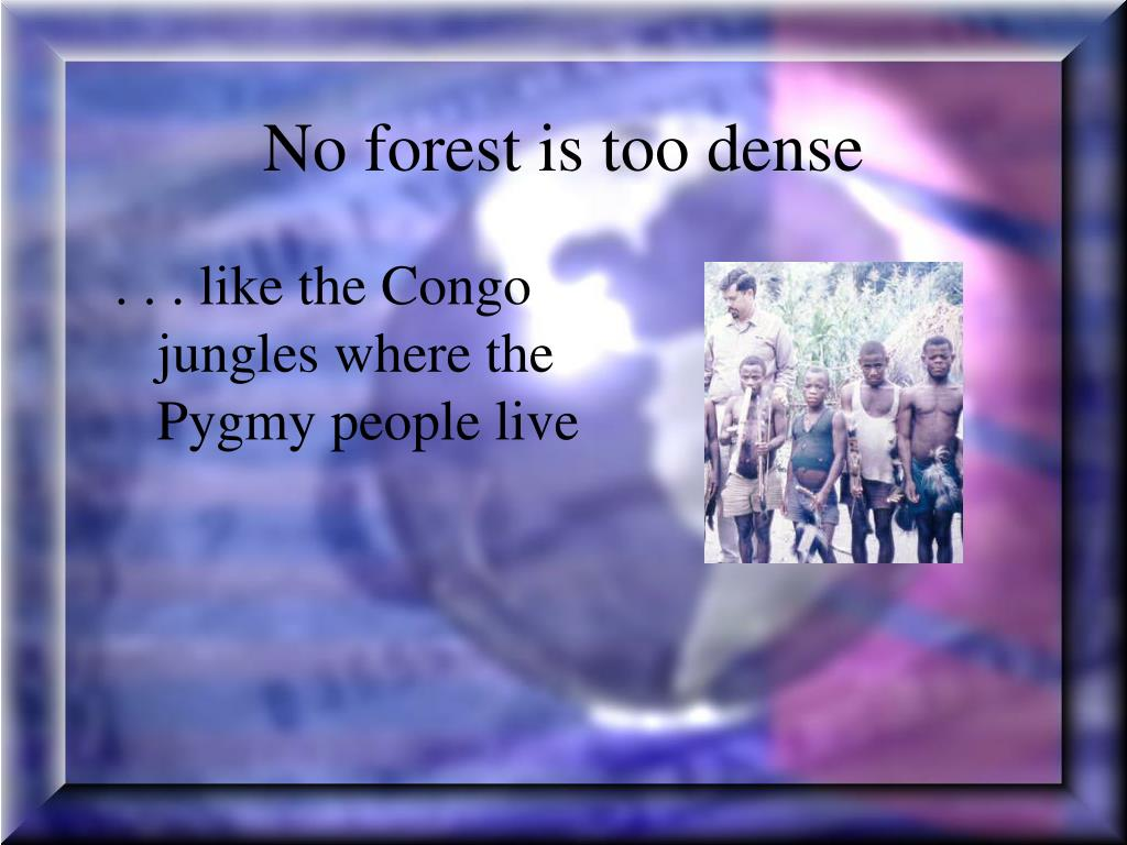 No forest is too dense