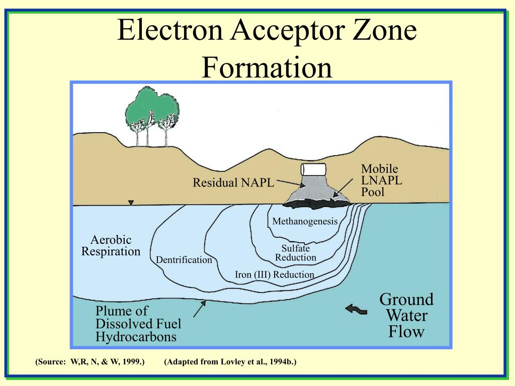 Electron Acceptor Zone Formation