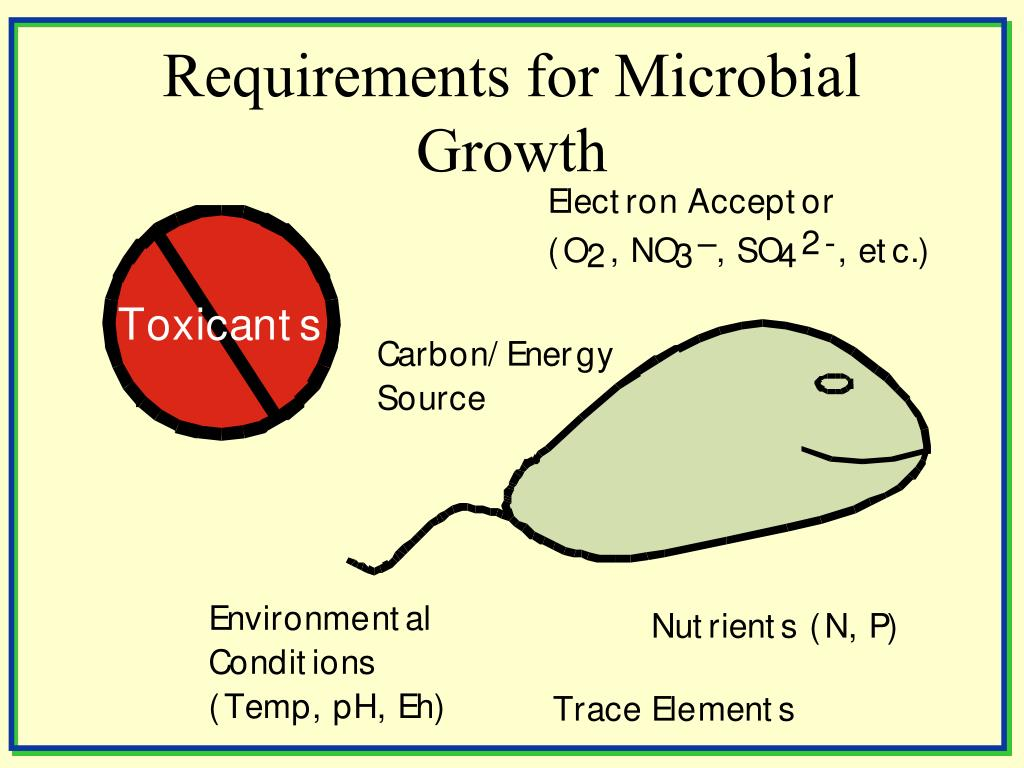Requirements for Microbial Growth