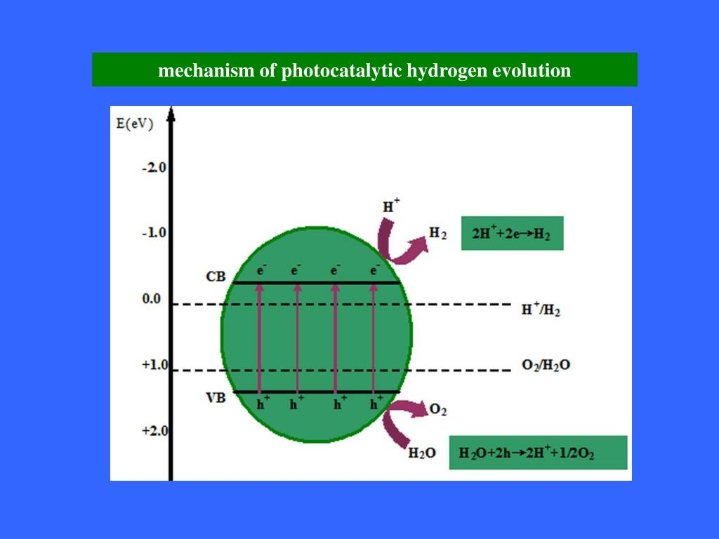 mechanism of photocatalytic hydrogen evolution